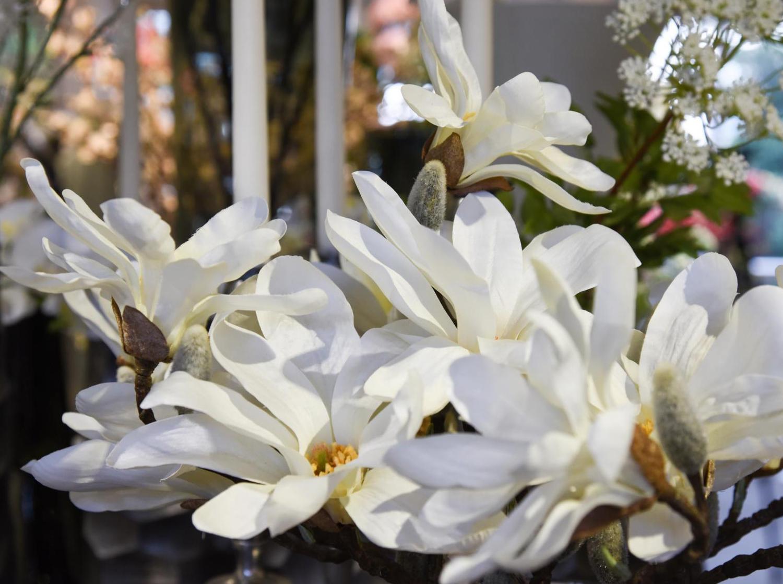 Koehler Ihr Florist Am Freilichtmuseum In Molfsee